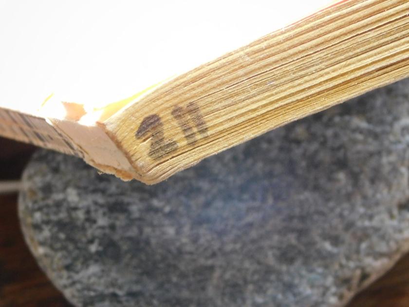 DSCN0674